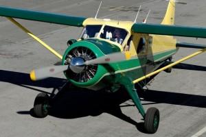 Harrison+Ford+Takes+Flight+rMkuOiZwzpyl